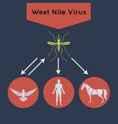 West nile virus icon vector
