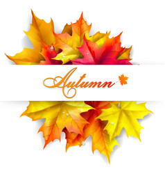 Abstract autumn background vector