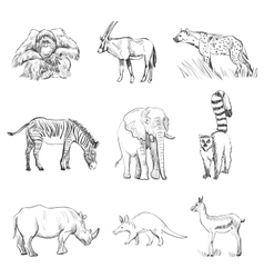 Character design set of animals silhouettes vector