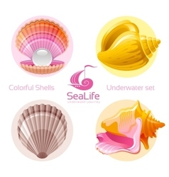Icon set with tropical colorful shells and logo vector
