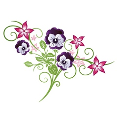 Pansy summer vector