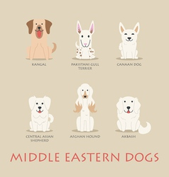 Set of middle eastern dogs vector