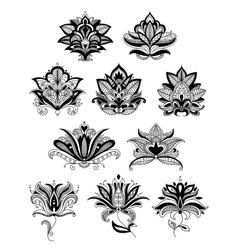 Indian or persian paisley flowers vector