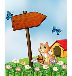 A cat beside an arrow board vector image vector image