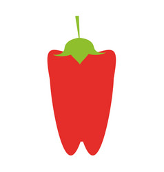 peppers food flat vector image vector image