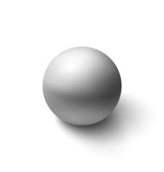Realistic grey sphere vector image
