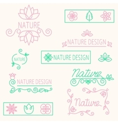 set linear ornament elements eco-design vector image