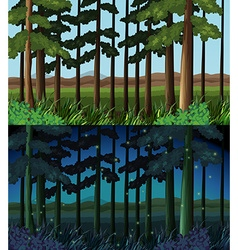 Forest scene at day time and night time vector