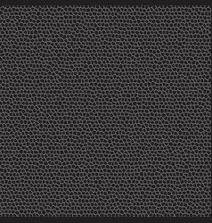 black leather pattern vector image vector image