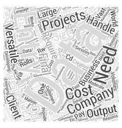Data entry companies Word Cloud Concept vector image vector image