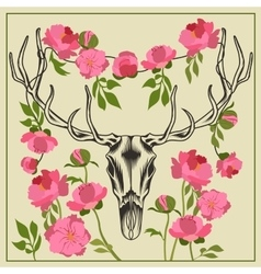 Deer skull antlered flowers peonies vector
