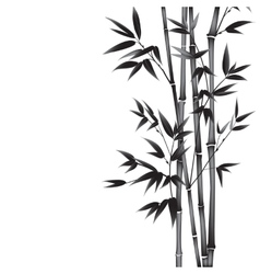 Ink paint bamboo vector