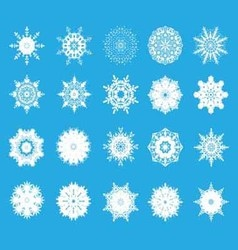 set of twent snowflakes vector image vector image