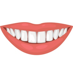 Healthy smile vector