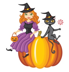 Witch on pumpkin vector