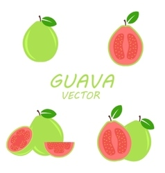 flat Guava icons set vector image vector image