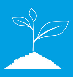 growing plant icon white vector image vector image