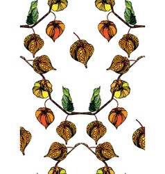 Physalis pattern2 vector image