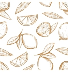 seamless pattern with hand drawn lemons vector image