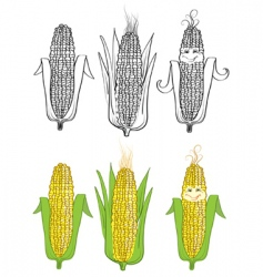 Corn cartoon vector