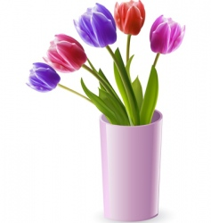 tulips in a pink vase vector image