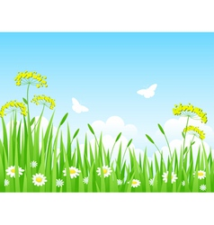 Green meadow with flowers and vector