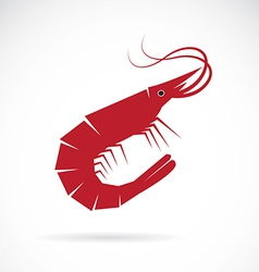 image of an shrimp design vector image