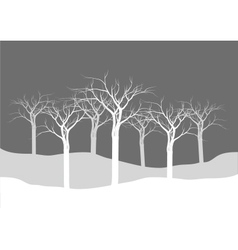 Silhouettes of dry tree forest vector image vector image