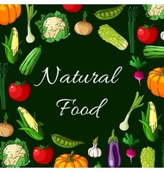 Vegetables Natural food banner of vegetable icons vector image