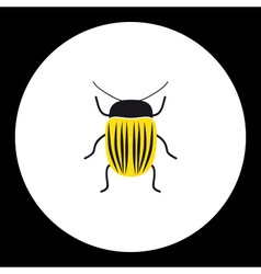 Simple yellow little colorado beetle black icon vector
