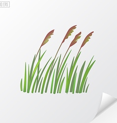 Bunch of wheat on white background vector