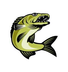 Walleye fish jumping vector