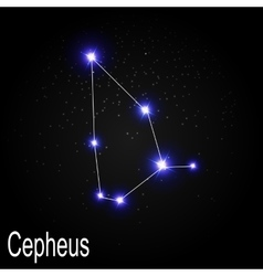 Cepheus constellation with beautiful bright stars vector