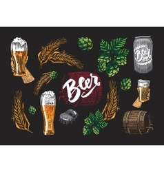Colored beer elements set vector