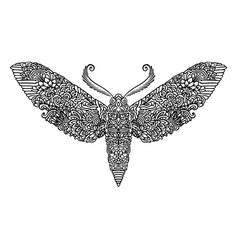 Night butterfly adult coloring book vector