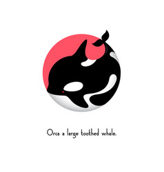 Orca whale ocean sea t shirt graphics vector