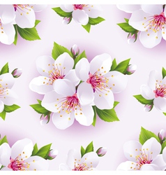 Seamless background pattern with blossoming sakura vector image