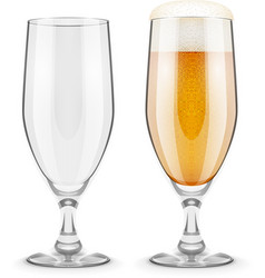 Beer with foam in glass vector
