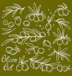 Set of graphic olive branches vector