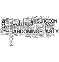 Abdominoplasty cost or tummy tuck cost text word vector