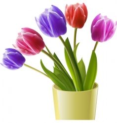 tulips in a yellow vase vector image vector image