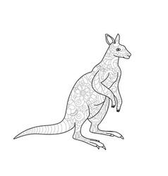 kangaroo coloring book for adults vector image
