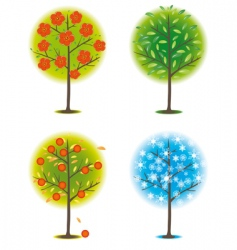 one tree in different seasons vector image vector image