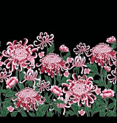 set of botanical flowers chrysanthemum vector image