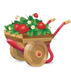 strawberry barrow vector image