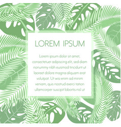 tropic leaves background with frame for your text vector image vector image