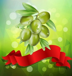 Olive branch with red ribbon on a green background vector