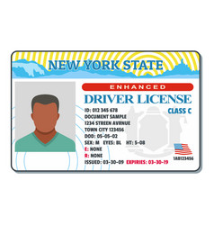 driving license for new york icon flat style vector image