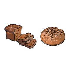 sketch dark brown sliced bread set vector image