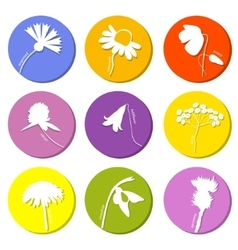 Wild flowers icons set vector image vector image
